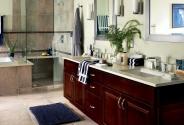 Waypoint Bathroom 450S